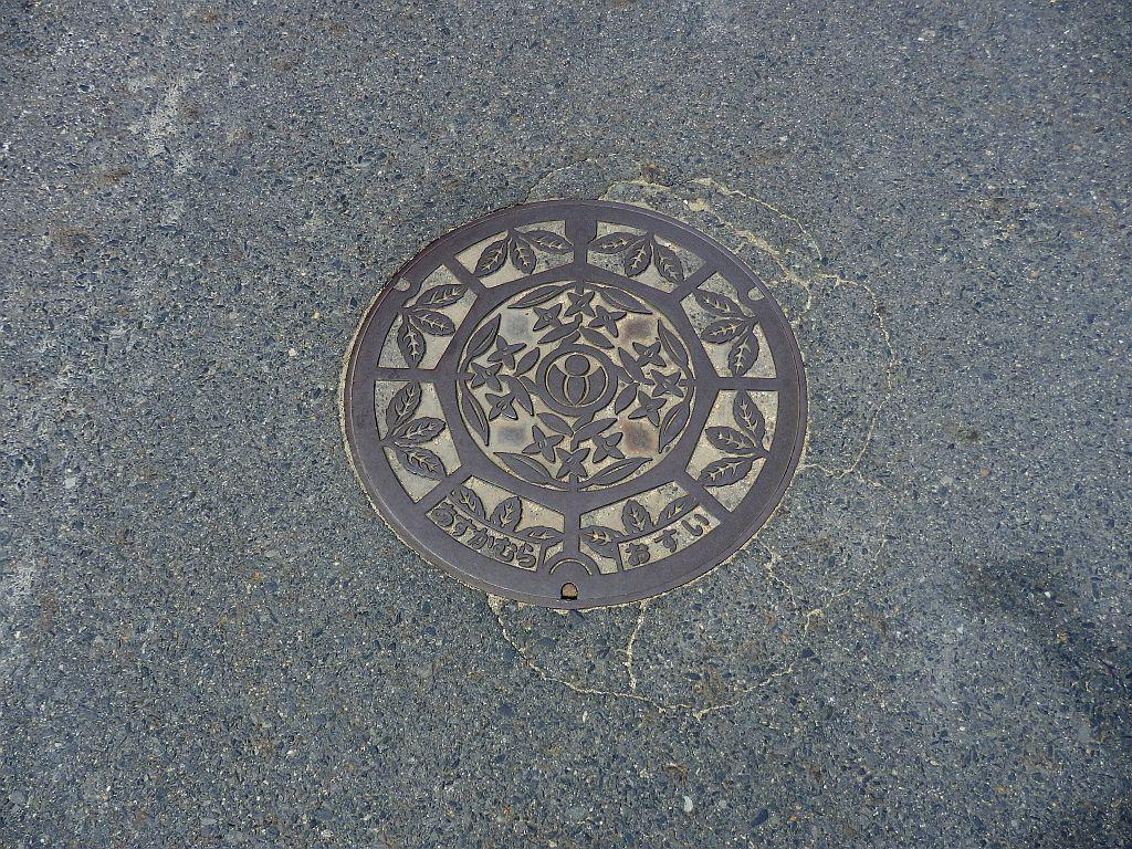 Manhole in Asuka