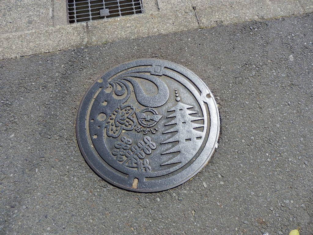 Manhole in Ebina City