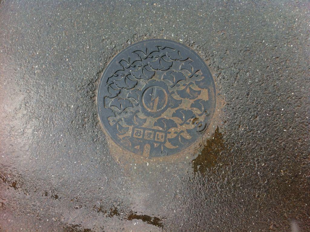 Manhole in Inagi city