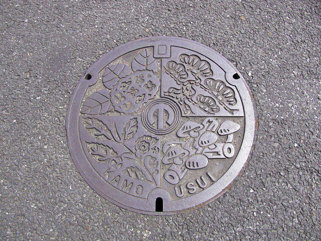 Manhole in Kamo