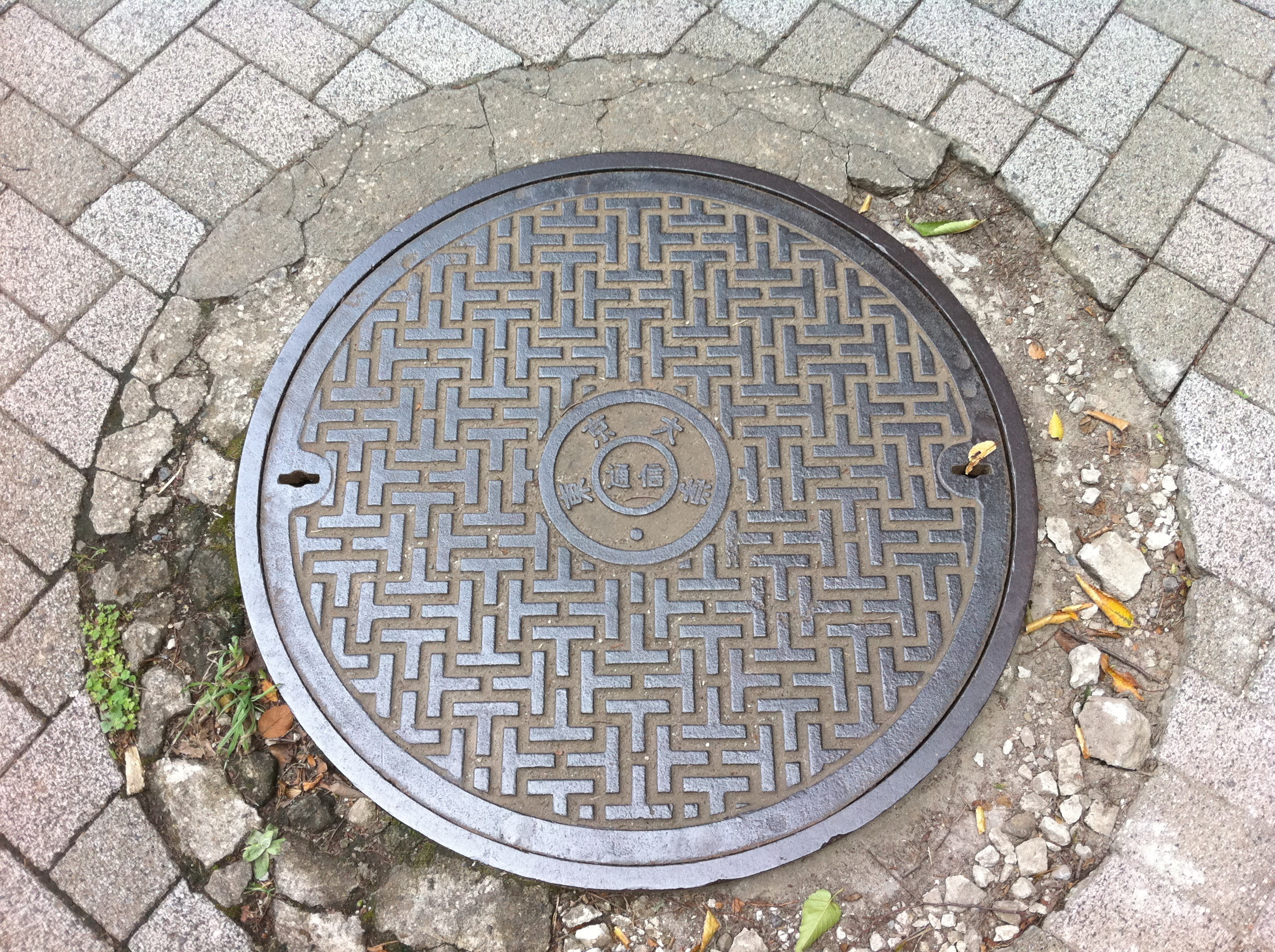 Manhole at The University of Tokyo
