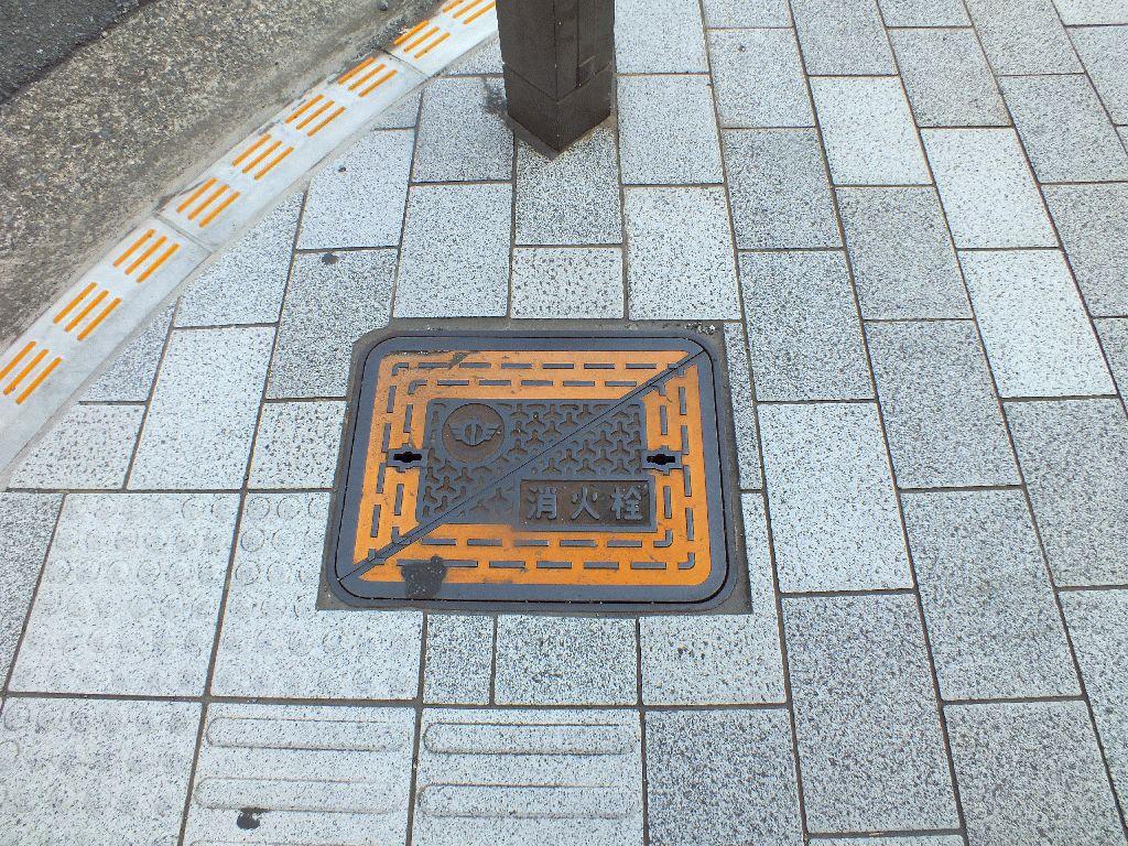 Manhole in minami-ashigara City