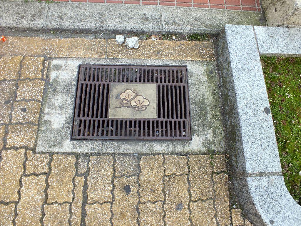 Manhole in Odawara City