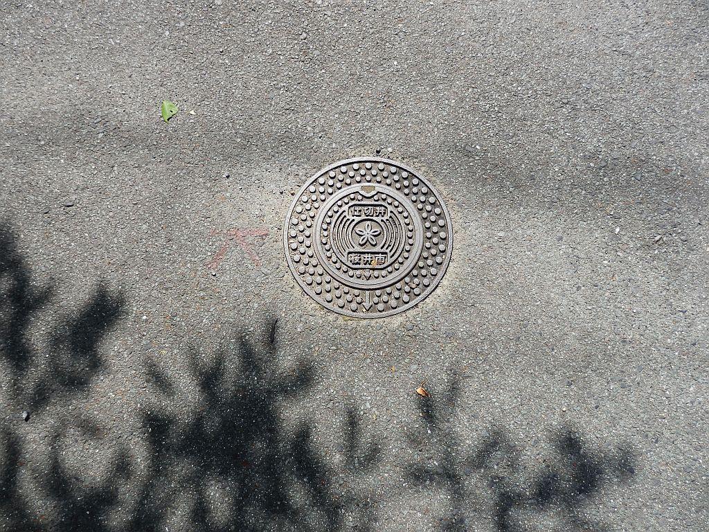 Manhole in Sakurai city