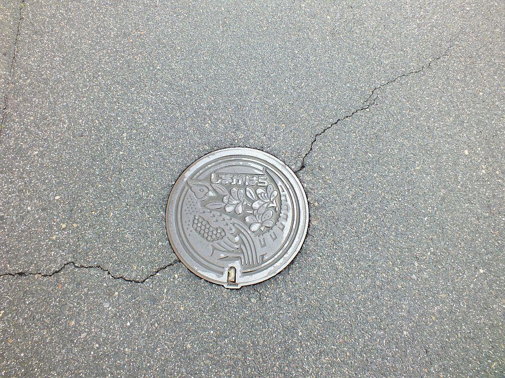 Manhole in Shimagahara