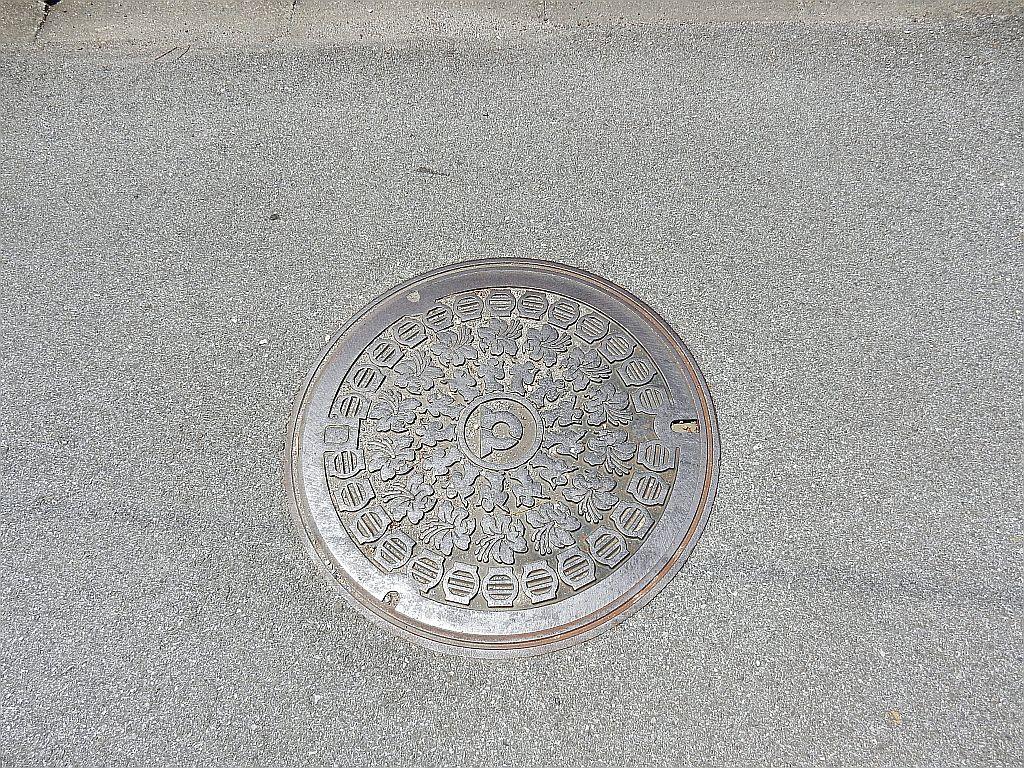 Manhole in 豊郷町