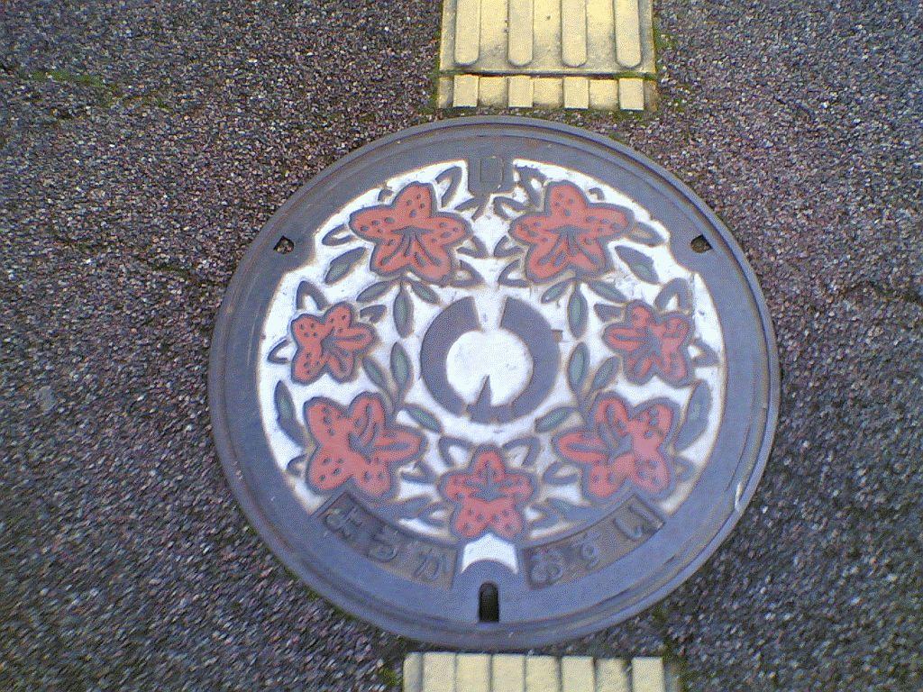 Manhole in Youka District of Yabu-shi