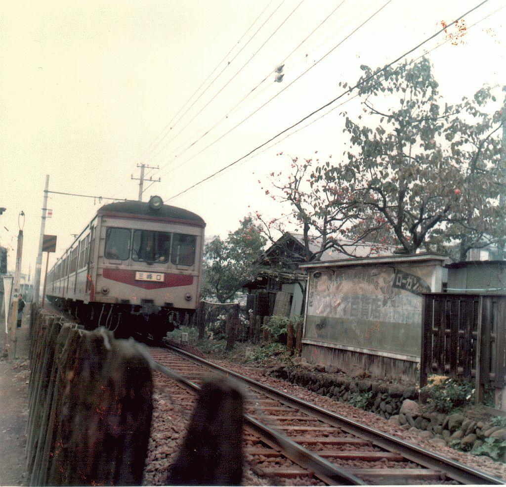 Chichibu Line - near Ohana-batake Sta.
