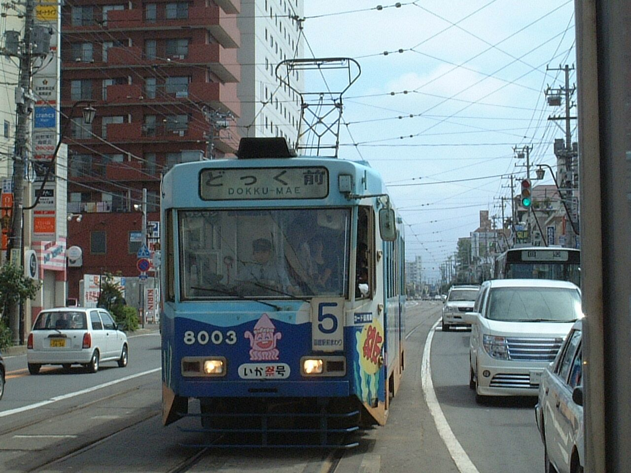 Goryokaku 8003