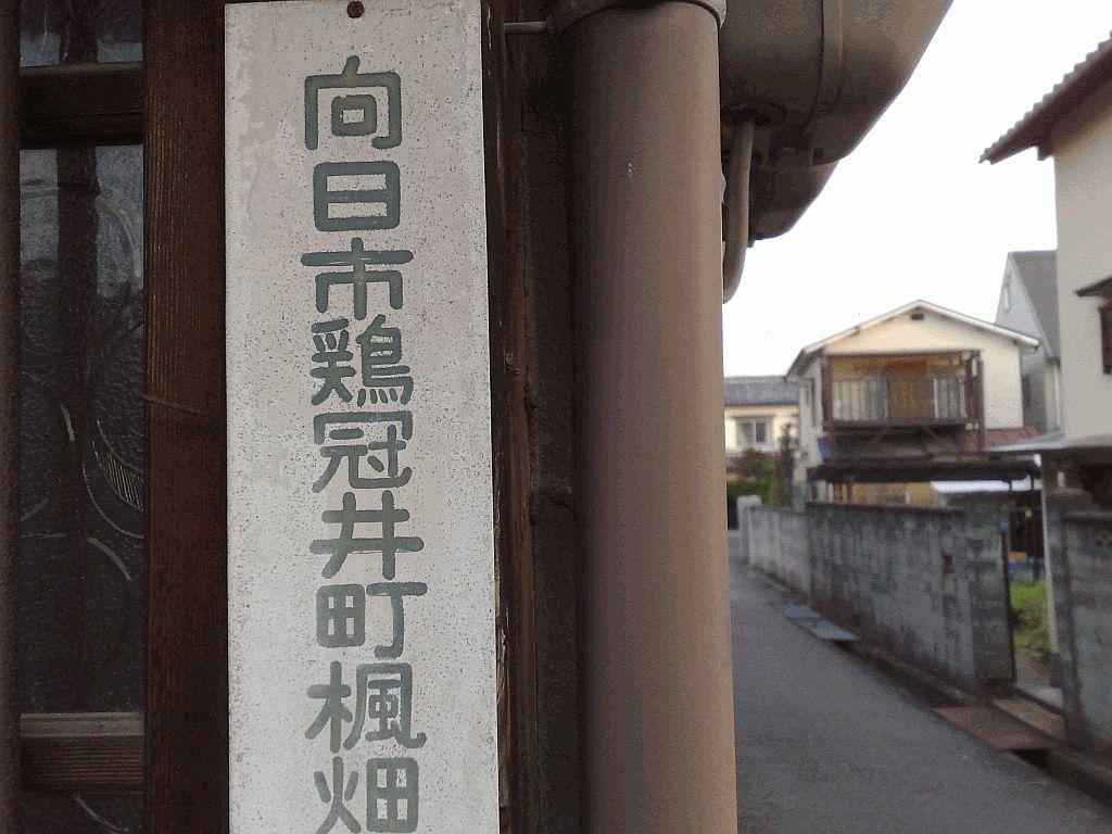 Seki Daimyojin