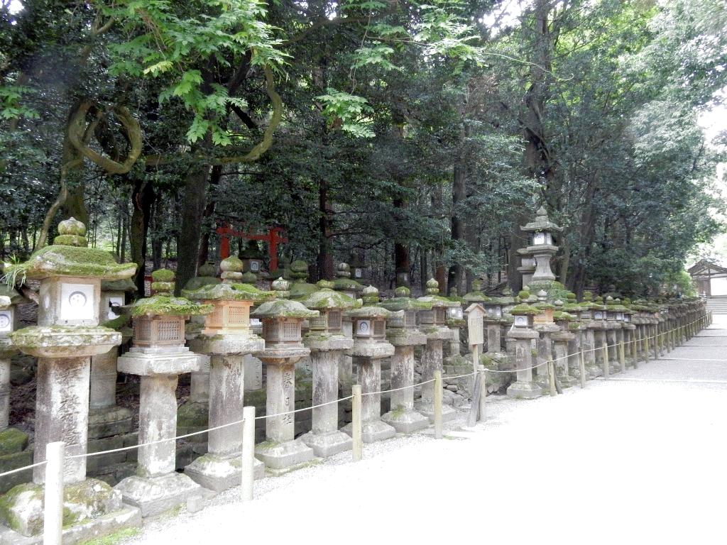 紀伊神社までの参道