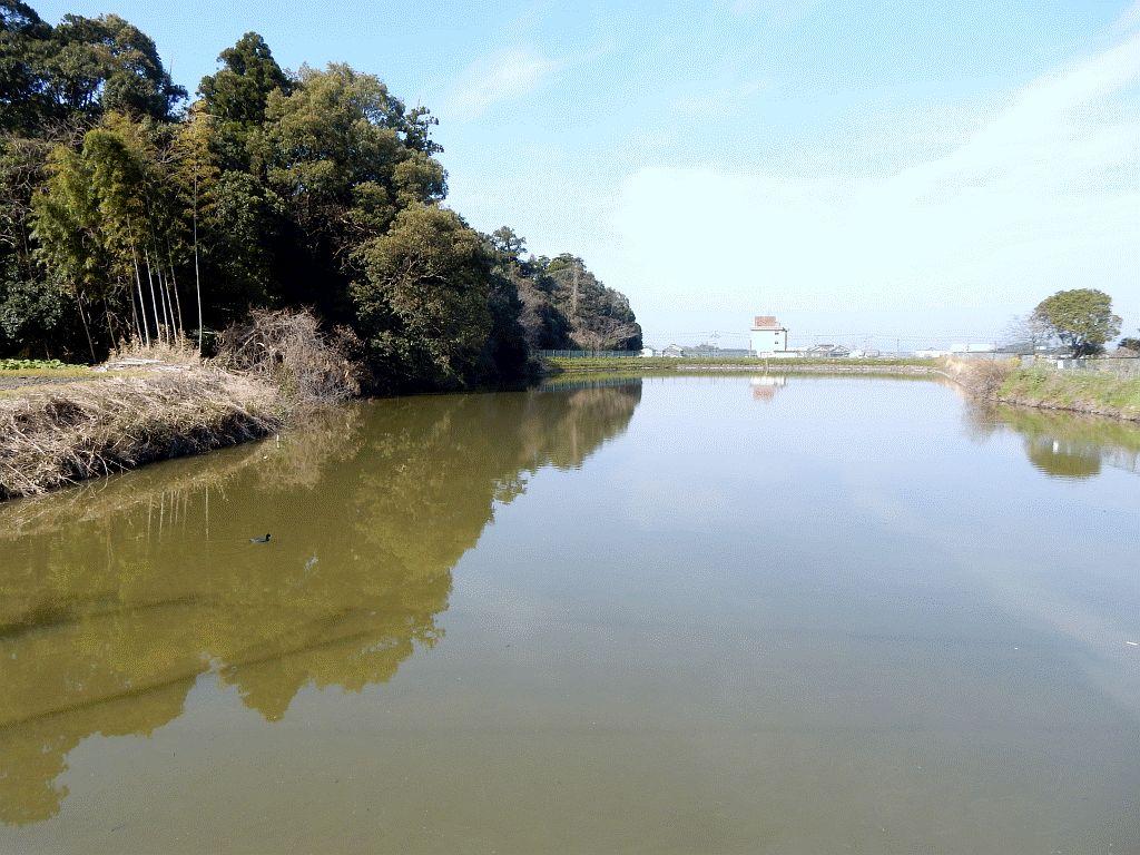 兵庫町の溜池