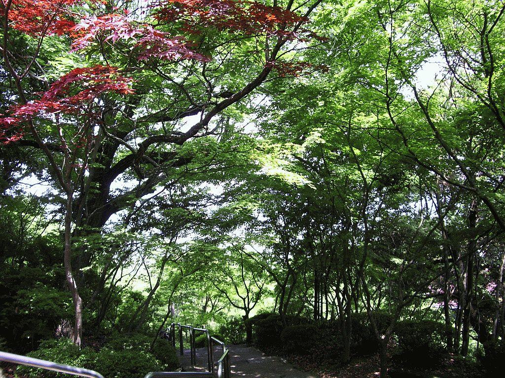 Omi-Hachiman