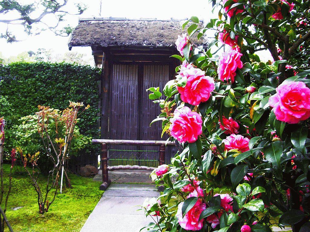 Shohoujii Temple