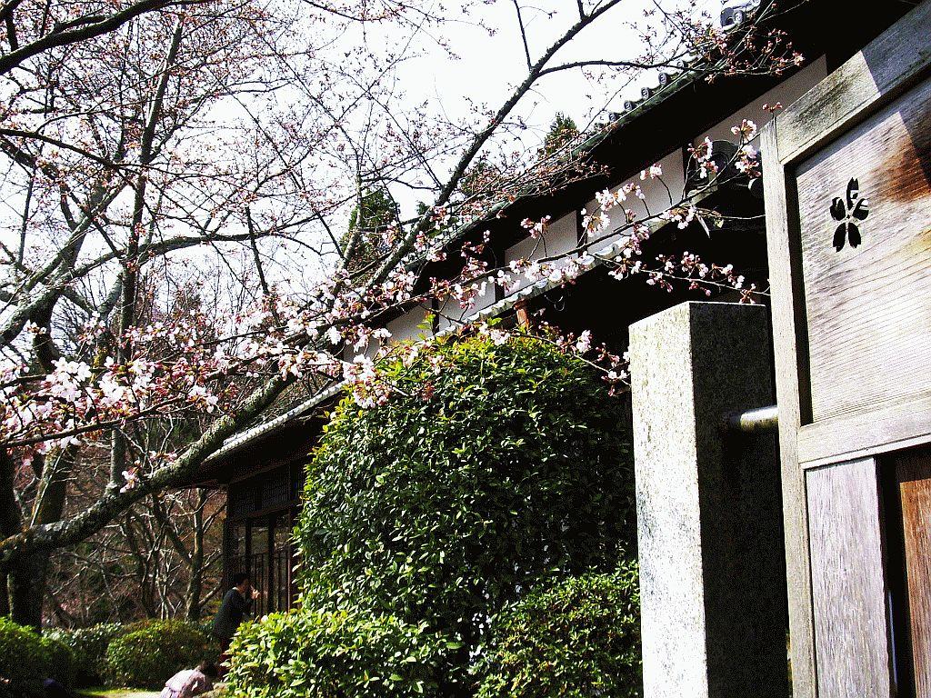 Shoji-ji Temple