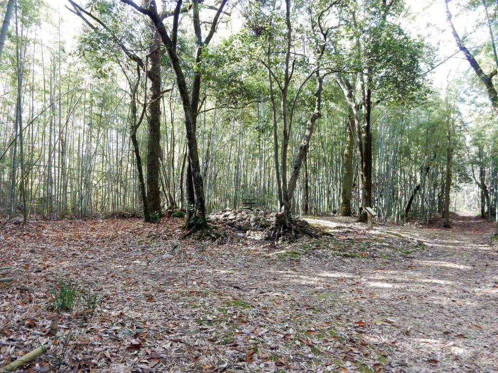 河辺いきものの森