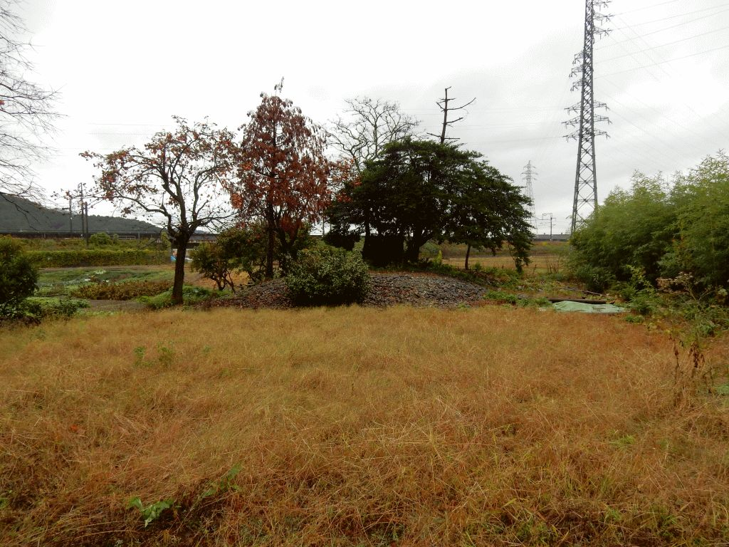 山本町・石塚の野神