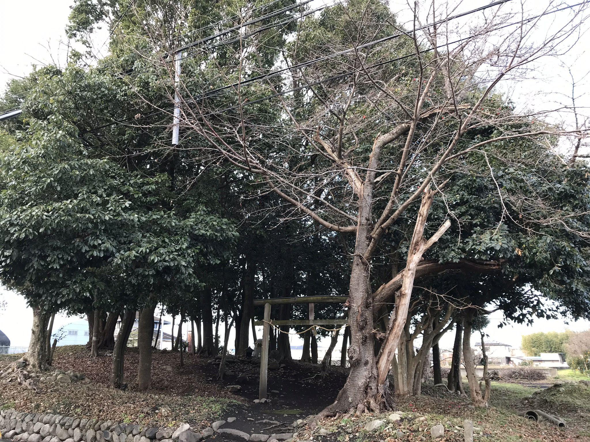 林田町の山神