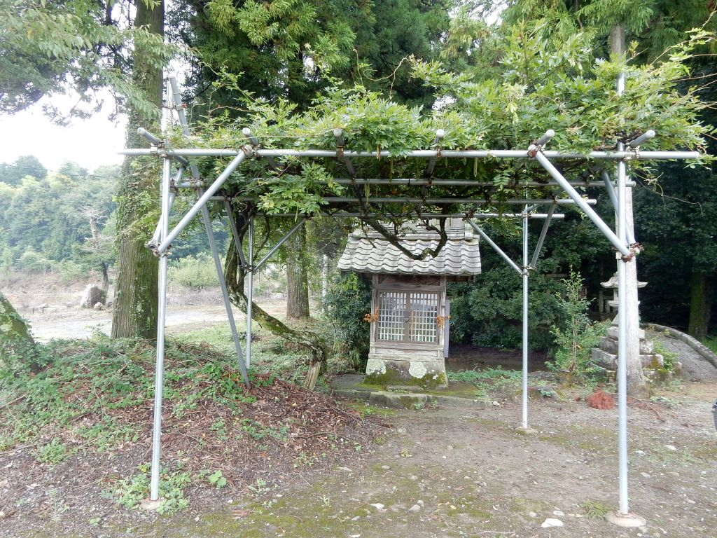 伊富岐神社